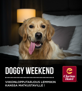 Doggy Weekend
